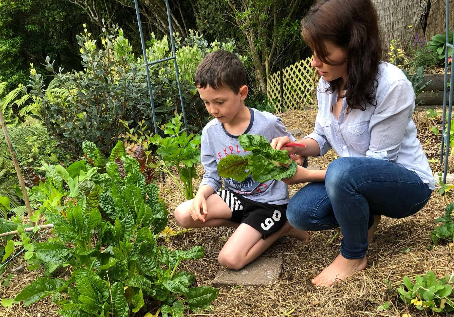 Growing Vegetables on a Budget
