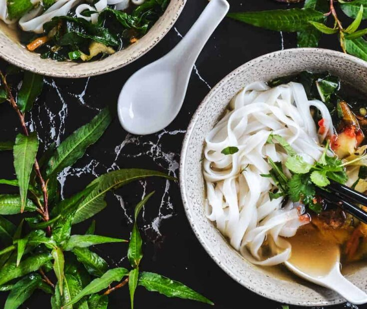 Vegetable Pho with Mushrooms, Carrot, Cabbage and Kale
