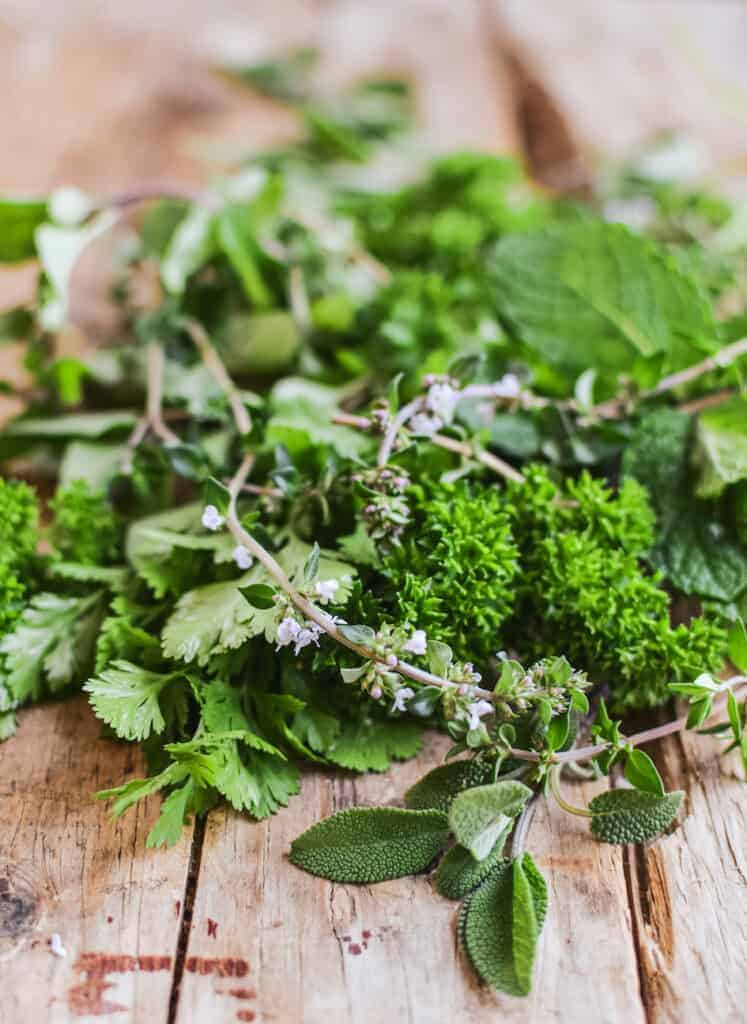 close up of a variety of herbs - thyme, sage, parsley, coriander