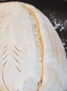 A close up of an unbaked sourdough, showing a cut through it with bubbles in the dough