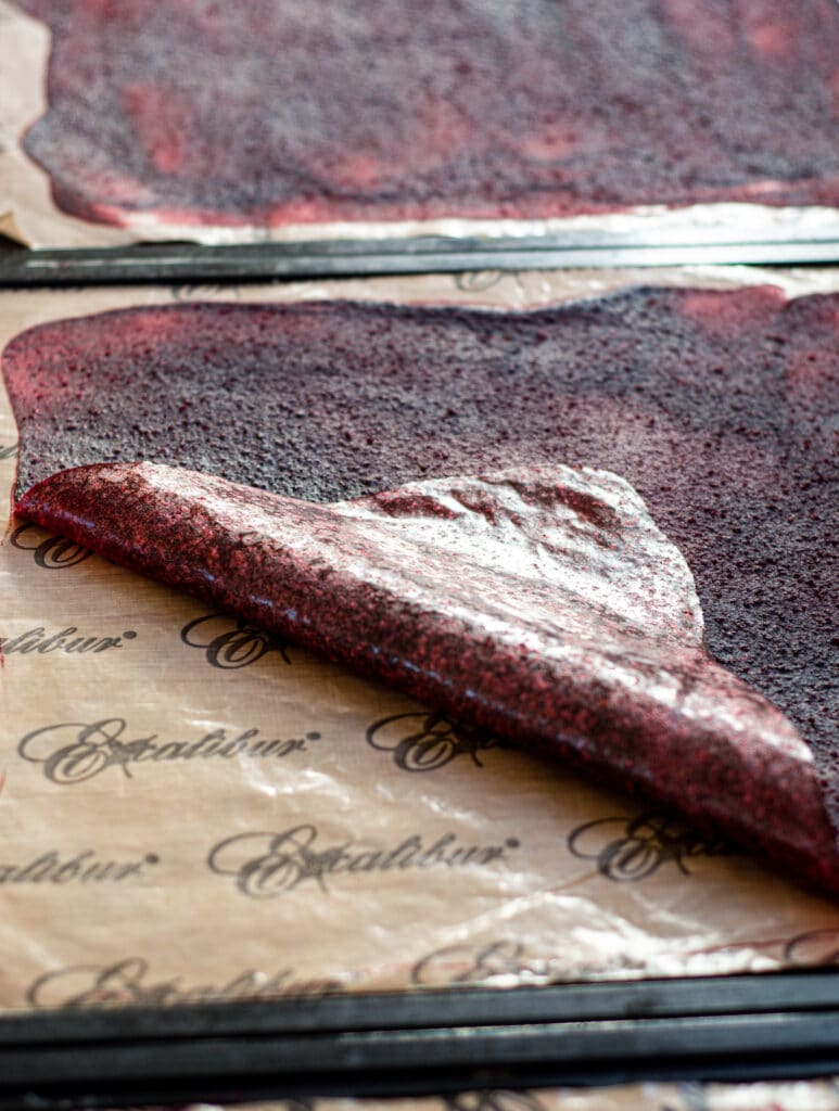 dried fruit leather on dehydrator sheets